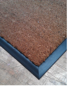 Coir-Edged-816x1024[1]